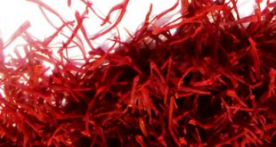 Export saffron price